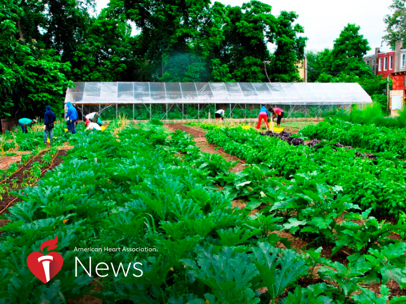 News Picture: AHA News: Farms Flourish and Nourish in Philadelphia Neighborhood