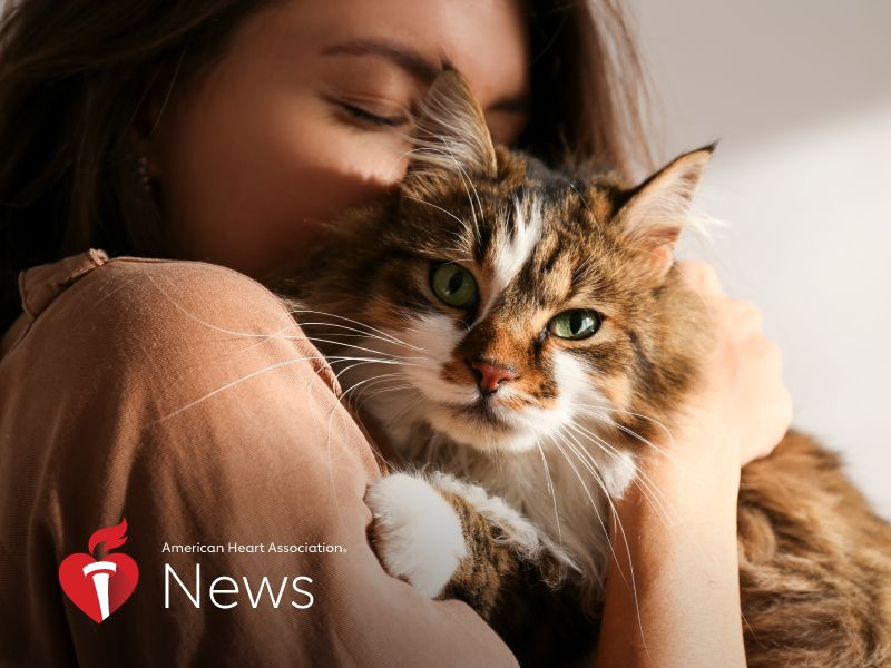 AHA News: Want Your Cat to Stay in Purrrfect Health? Watch Out for Heart Disease