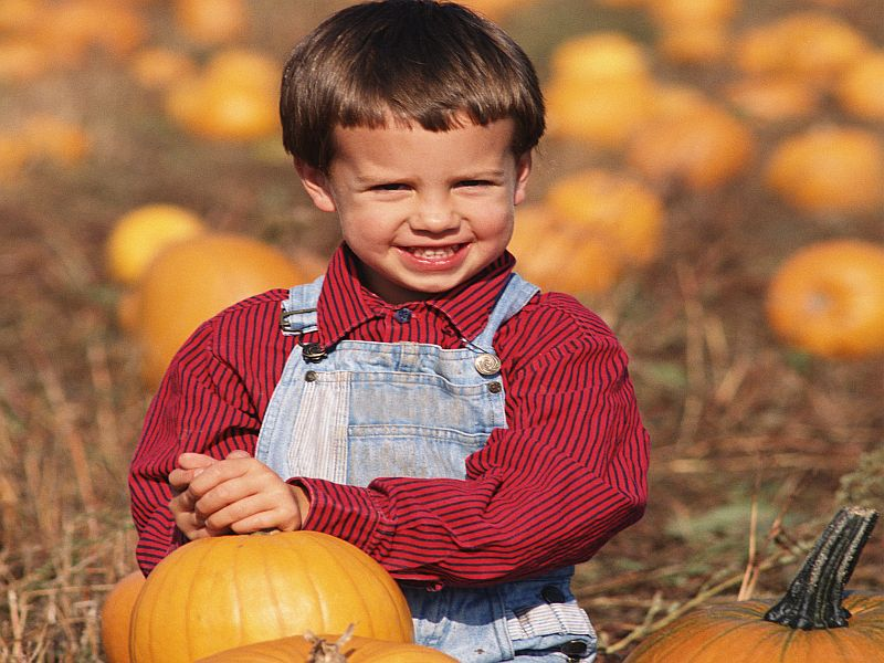 News Picture: Celebrate Autumn Traditions Without Raising Your COVID Risk