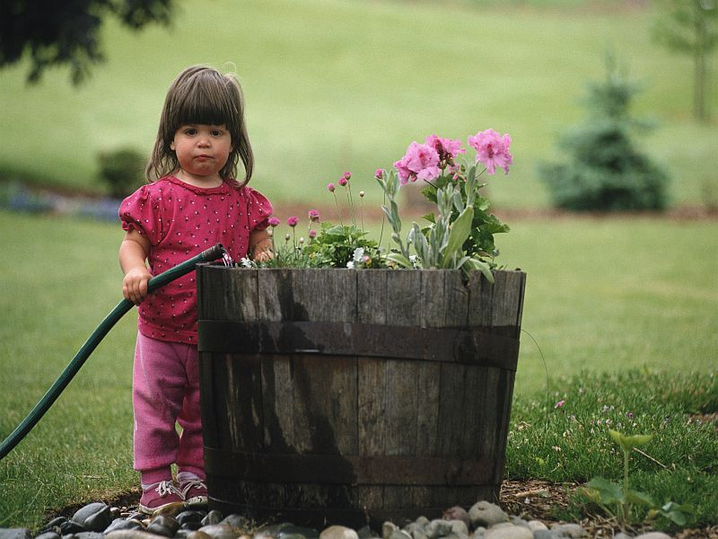 Gardening Isn't Just for Adults