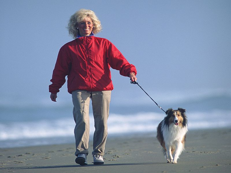 News Picture: Dog Walking a Treat for Pet and Owner Alike