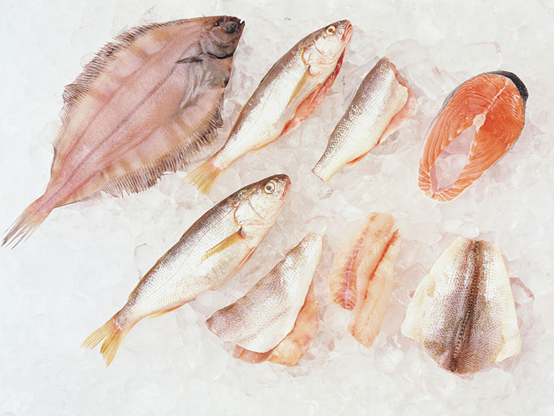 eating fish may curb blindness