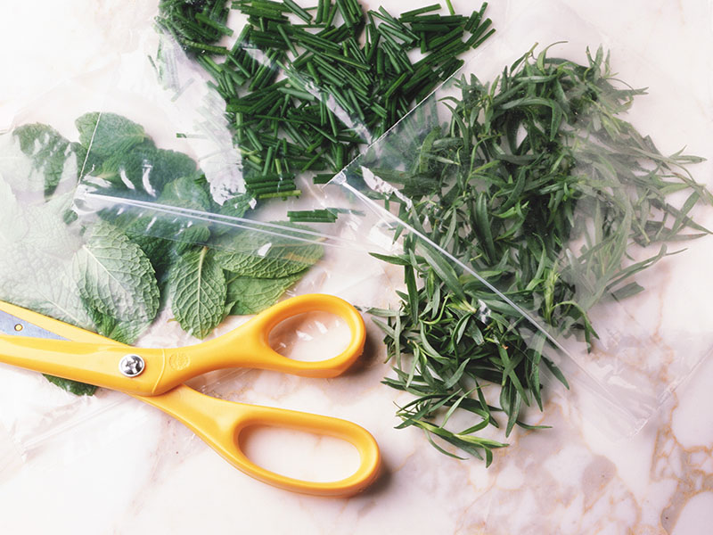 News Picture: Spice Up Your Cooking With Licorice-Scented Herbs