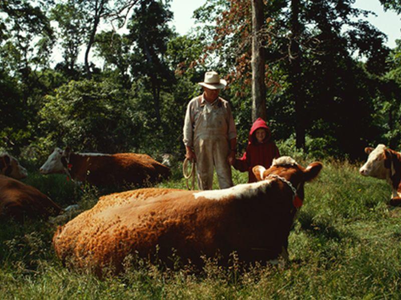 El riesgo de suicidio es especialmente alto para los granjeros estadounidenses