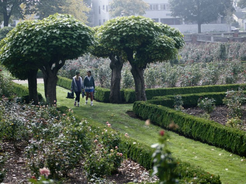 Study Links Green Spaces to Longer Lives for Women
