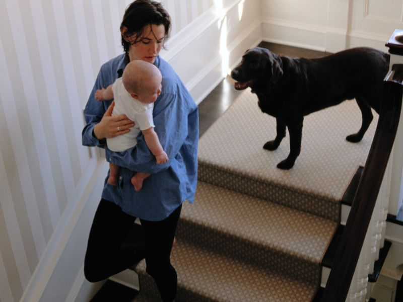 Dogs in the Home May Lower Kids' Odds for Asthma