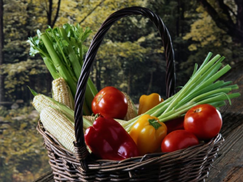AND: Vegetarian Diet a Healthy, Environmentally Sound Choice