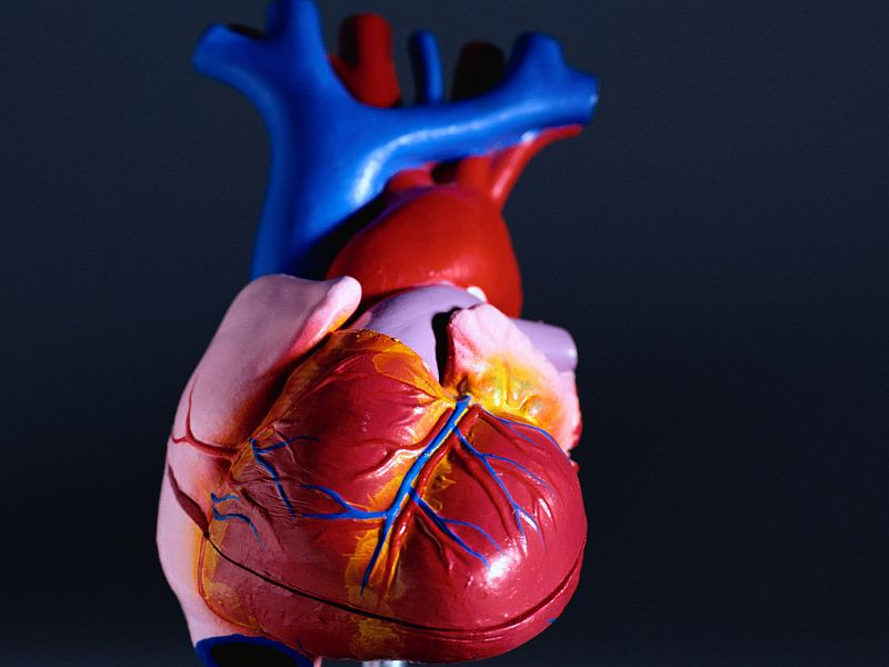 Gel Injections May Help Heart Failure Patients