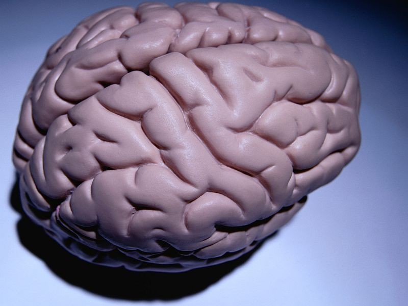 News Picture: Scientists Zero in on Brain Area Linked to 'Parkinson's Gait'