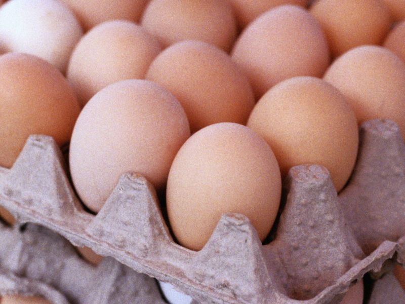 News Picture: Unscrambling the Egg Data: One a Day Looks OK