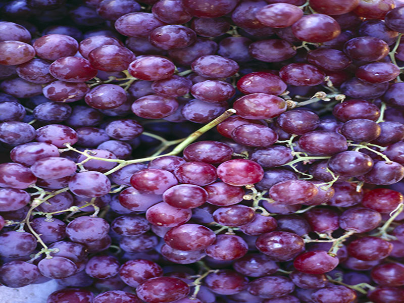 News Picture: Child Deaths Highlight Choking Dangers Posed by Grapes