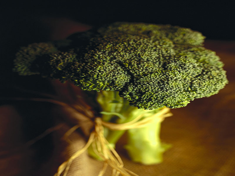 Say yes to veggies. Broccoli can help manage diabetes, finds study