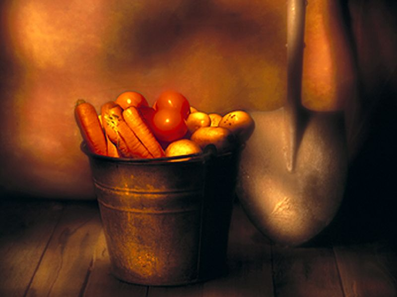 Try Roasted Root Vegetables for a Tasty Fall Dinner