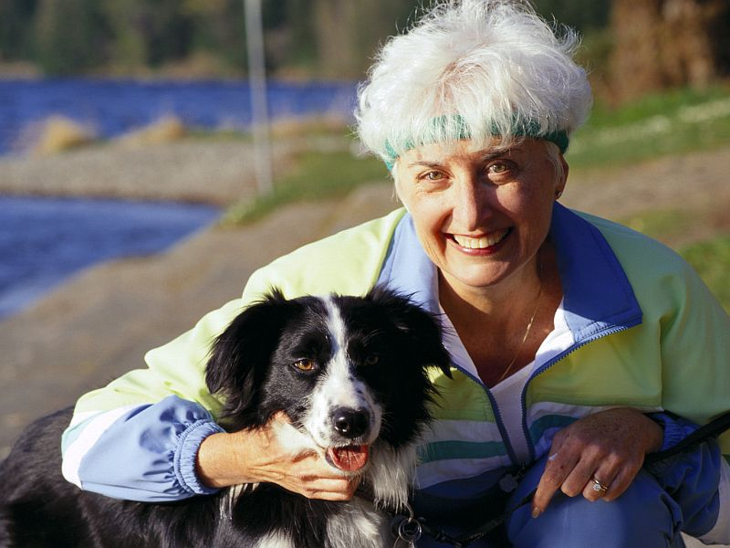 News Picture: Dogs' IQs Can Vary, Study Shows