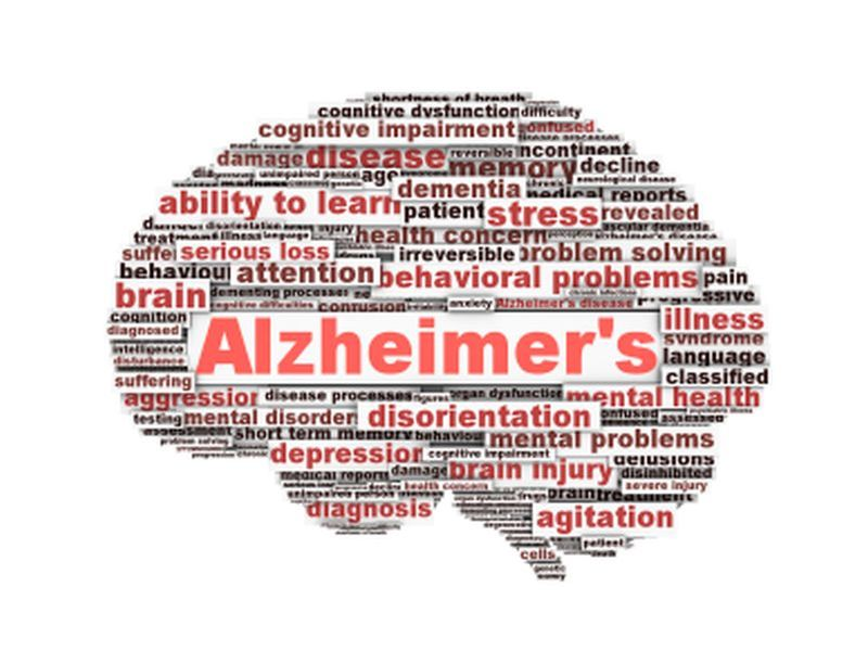 Scientists Reduce Alzheimer's-Linked Brain Plaques in Mice