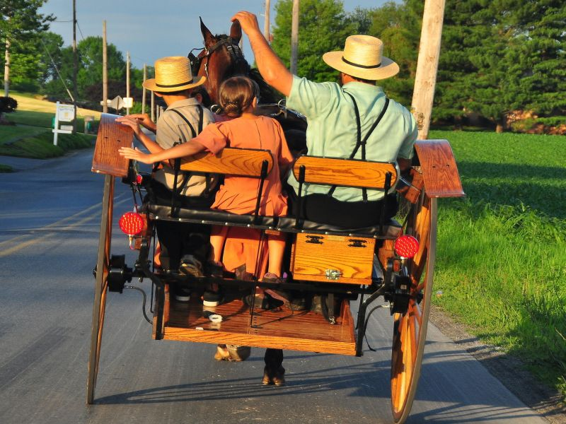 Amish hold secret for longer life after MUTANT gene discovered by scientists