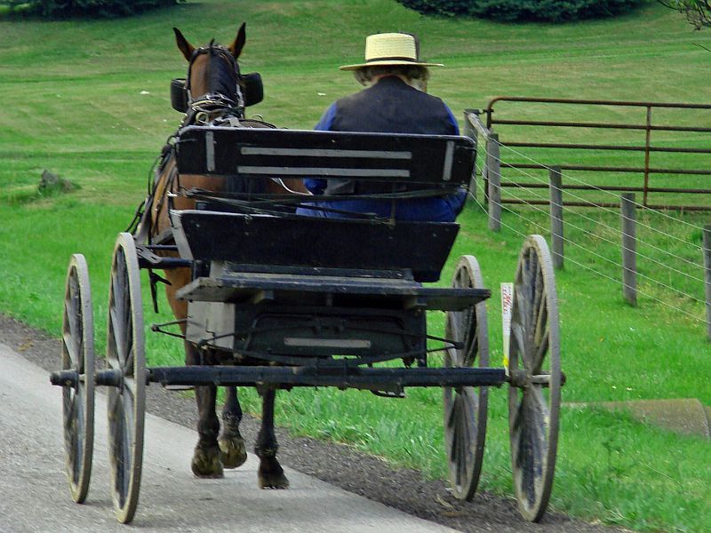 Amish Lifestyle Brings Unexpected Benefit: Less Asthma