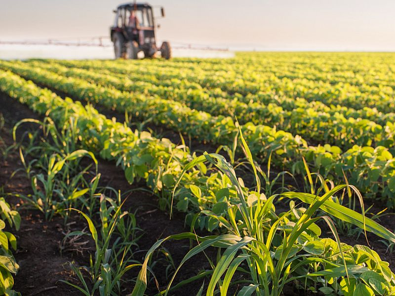 ALS risk from pesticides