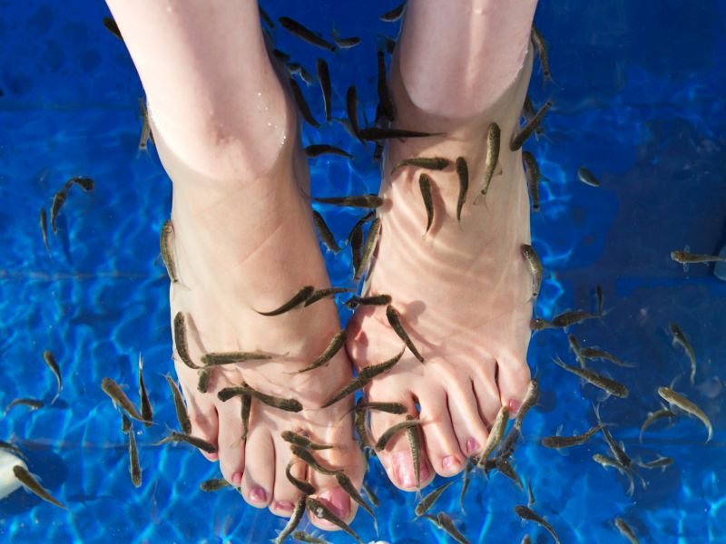 News Picture: 'Fish Pedicure' Caused One Woman's Toenails to Stop Growing