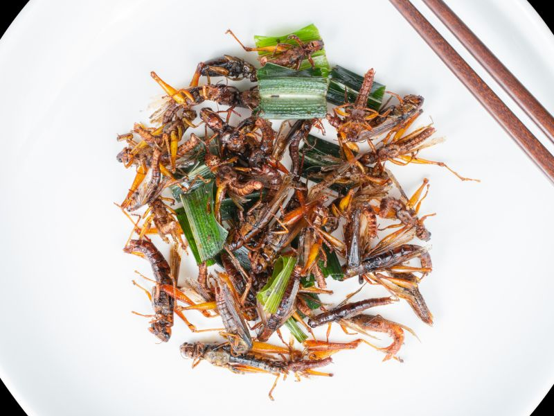 News Picture: Insects as Food? Selling Them as 'Tasty Luxuries' Might Work