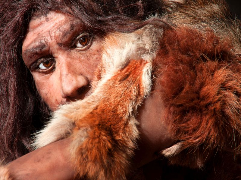 News Picture: How the Neanderthal in Your Genes Affects Your Health