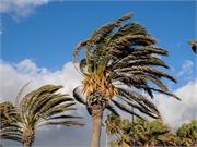 La pandemia podría complicar la temporada de huracanes