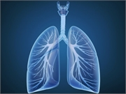 News Picture: Obesity May Boost Effectiveness of a Lung Cancer Therapy