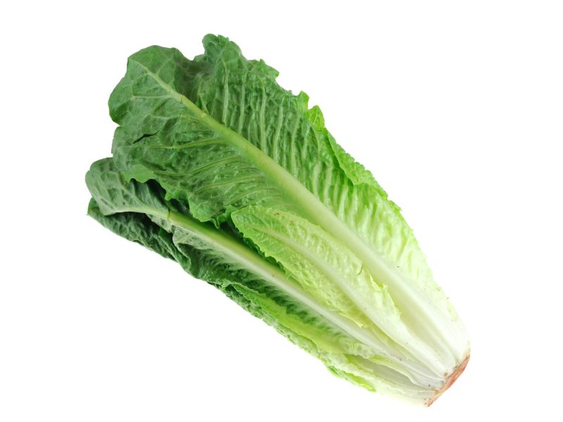 More Cases in Lettuce-Linked E. Coli Outbreak, But End May Be Near