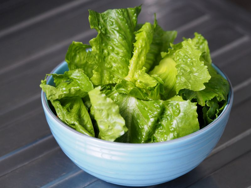 California Farm Implicated in Outbreak of E. coli Tied to Romaine Lettuce