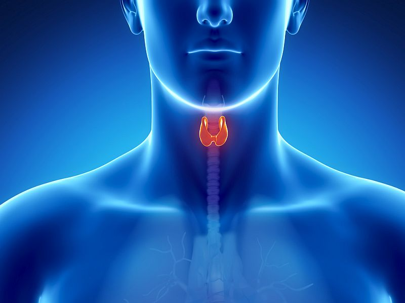 Coronavirus Can Infect, Inflame the Thyroid