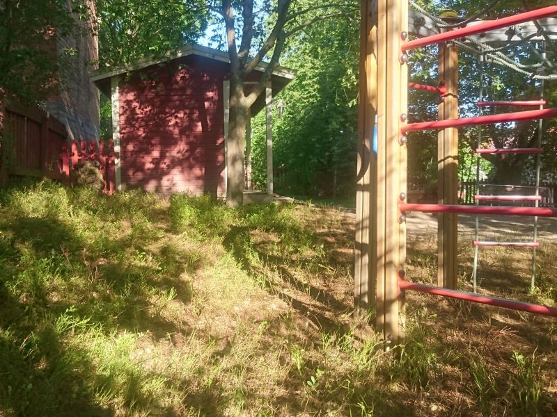 News Picture: Bringing the Forest to Kids' Daycare May Boost Young Immune Systems