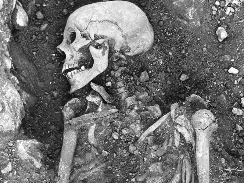 Skeletons May Put Blame on Vikings for Smallpox' Spread