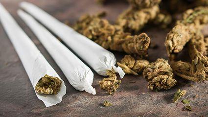 Marijuana Dependence And Mental Health Risks