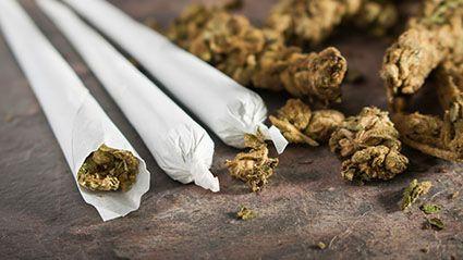 Marijuana and Learning